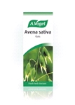 Avena sativa - Oats (50ml)