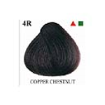 Copper Chestnut 4R - 135ml