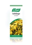 Solidago complex (50ml)